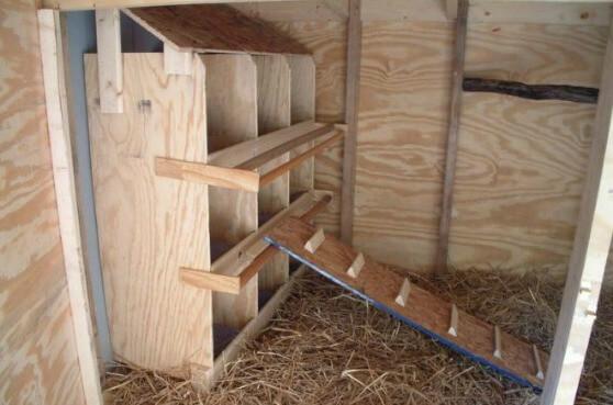 Гнезда для индеек несушек